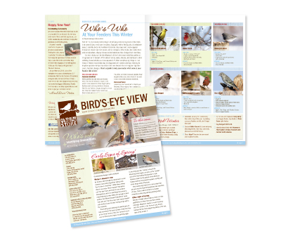 Birds'-Eye View Newsletters